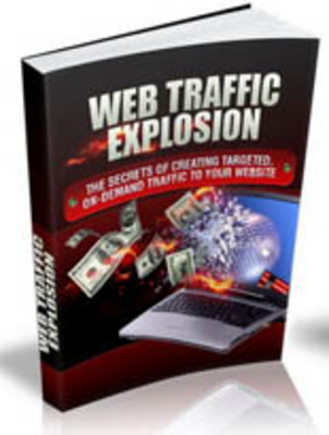Product picture Web Traffic Explosion With MRR